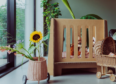 Babybox - HAP