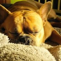 Snurken, een serieus probleem?