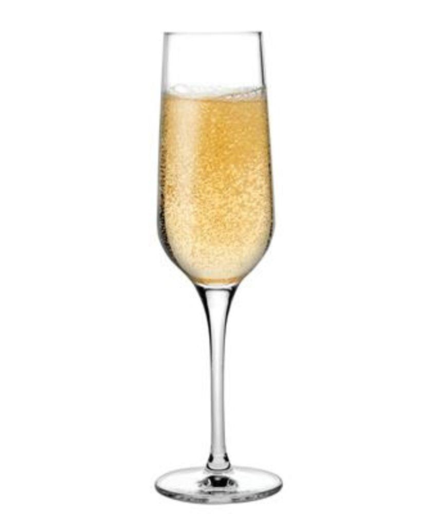 Nude Refine champagneglas 200 ml ( 6 stuks)
