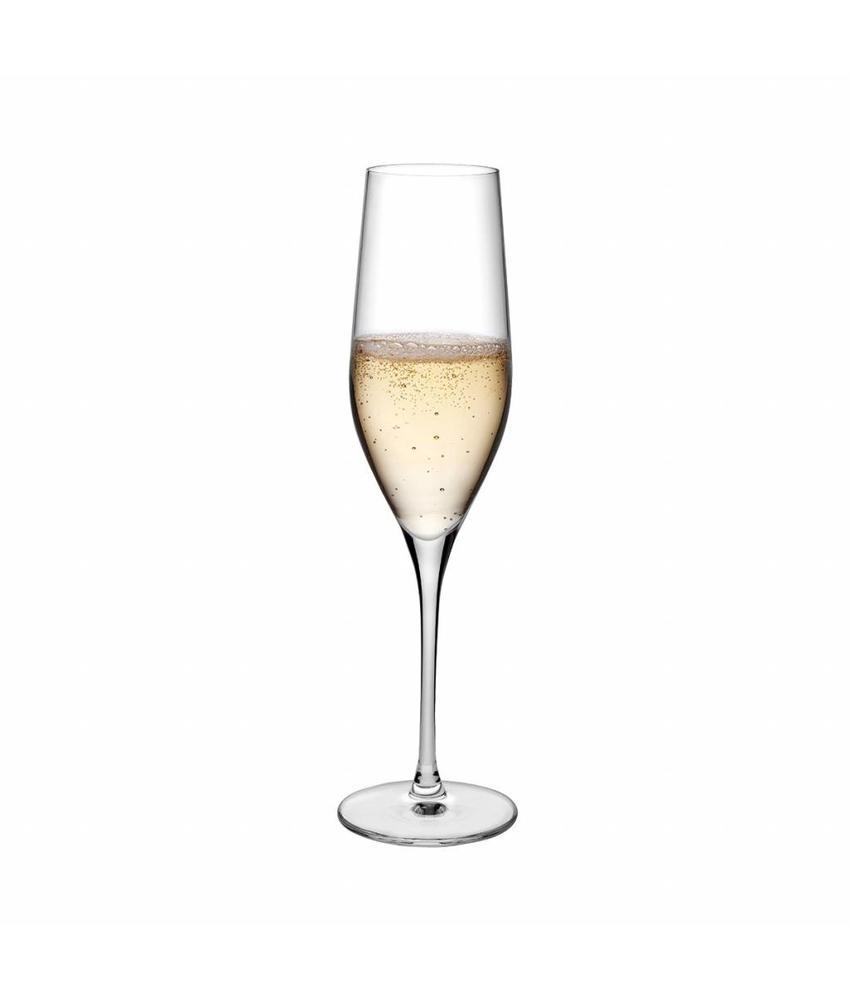 Nude Crystalline Vinifera champagne glas 255 ml ( 6 stuks)