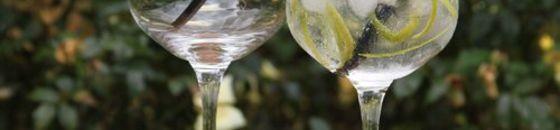 Gin & Tonic glazen
