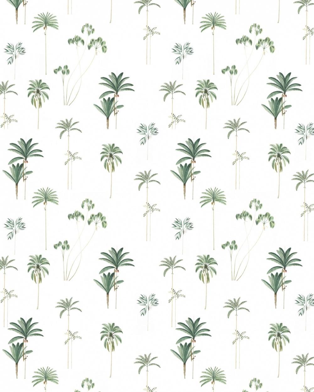 Creative Lab Amsterdam  Wall Paper Palms - 203x303cm - Prize per m2: € 27,00