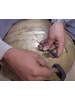 Zenza Pendant Lamp Grace - silver brass - Zenza