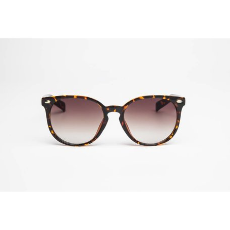 CLASSY Turtle/Brown Fade