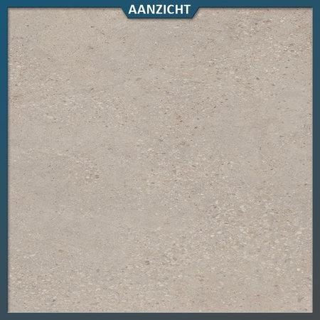 Castelvetro Keramische tuintegel Konkrete Grigio 100x100x2 cm