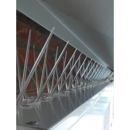 Anti-pigeon bird spikes on 0,5 mt Polycarbonate base 50 cm with 30 spikes, MIC230