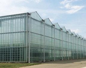 Glastuinbouw en kassen