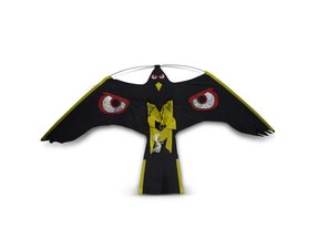 Bird of prey kites