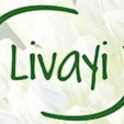 Livayi Herbal Shampoo