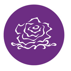 PURPLE ROSE COLOR PROTECTION