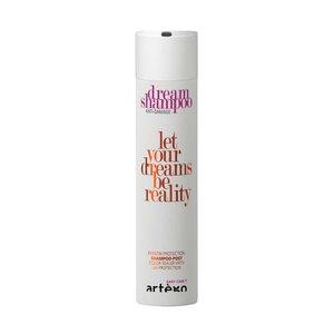 ARTEGO Dream Shampoo Anti-Damage, 250 ml