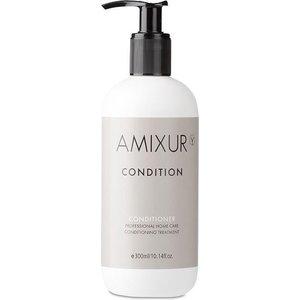 AMIXUR Conditioning Treatment Conditioner, 300ml