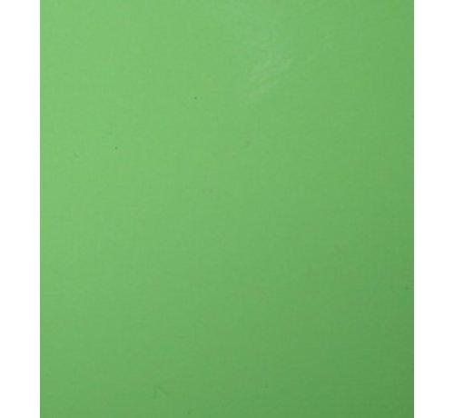 Ritrama Vinyl Apple Green (G)