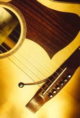 PU-1 single piezo for acoustic guitars