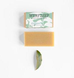 Holländische Honig Shampoo (Set von 6 Stucke)
