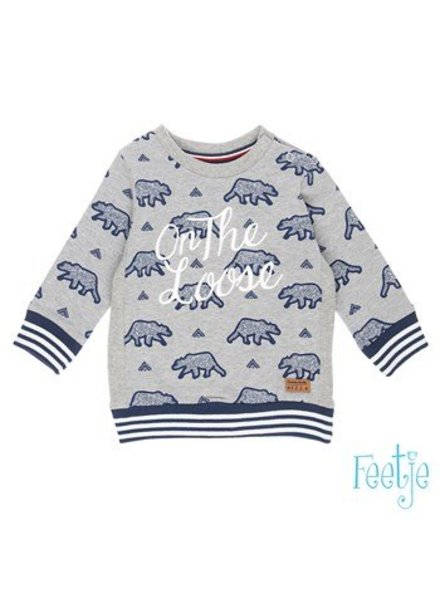 Feetje Baby sweater AOP Outsiders Color: grijs melange