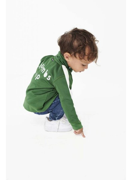 Tumble 'n Dry Boys sweatjack Keano Color: green