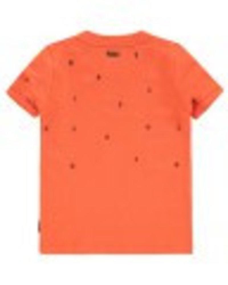 Tumble 'n Dry T-shirt Delhi