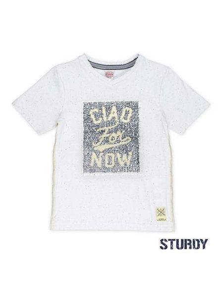 Sturdy T-shirt flipping artwork