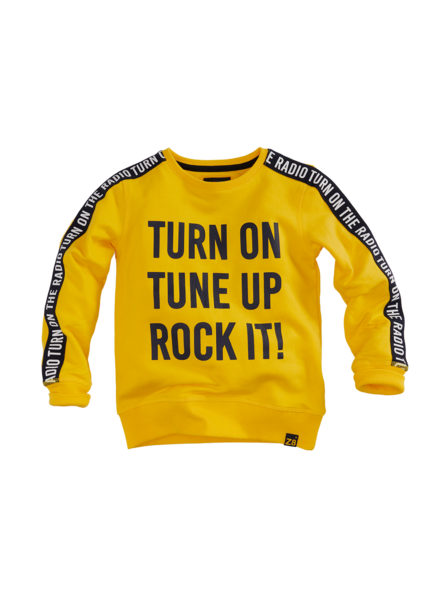 Z8 Boys Sweater Vic Color: Yellow fellow