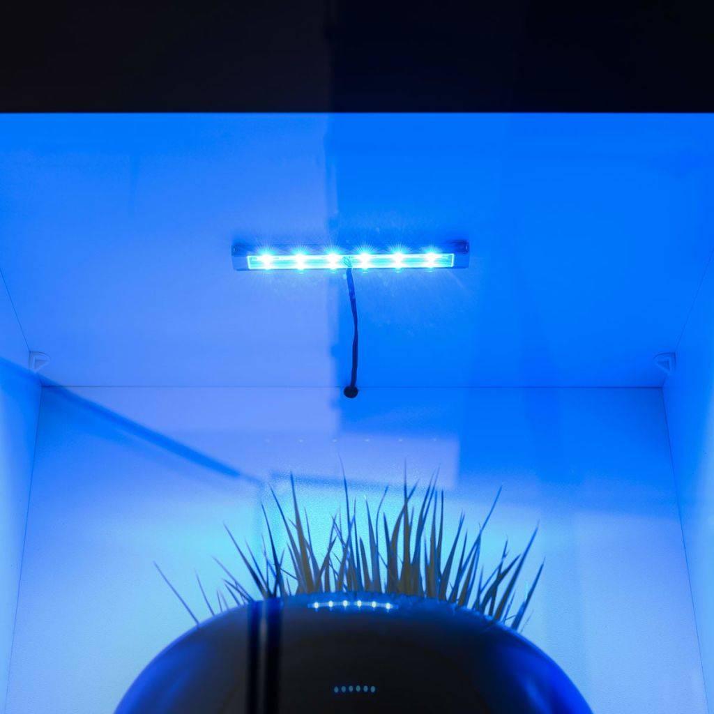 vidaXL Wandkasten tv-unit zwart hoogglans met blauwe led-verlichting ...