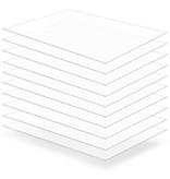 vidaXL Acrylplaten 600x800x4 mm transparant 10 st
