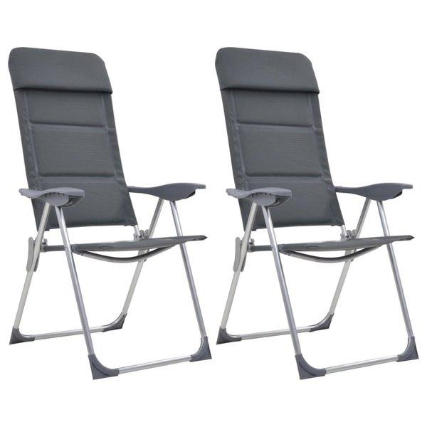 Campingstoelen 58x69x111 cm aluminium grijs 2 st