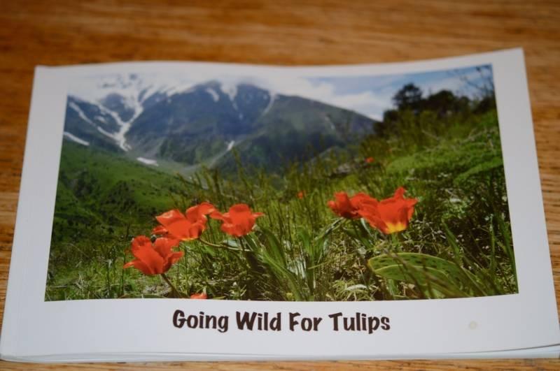 Boek  Going wild for Tulips (Engels)