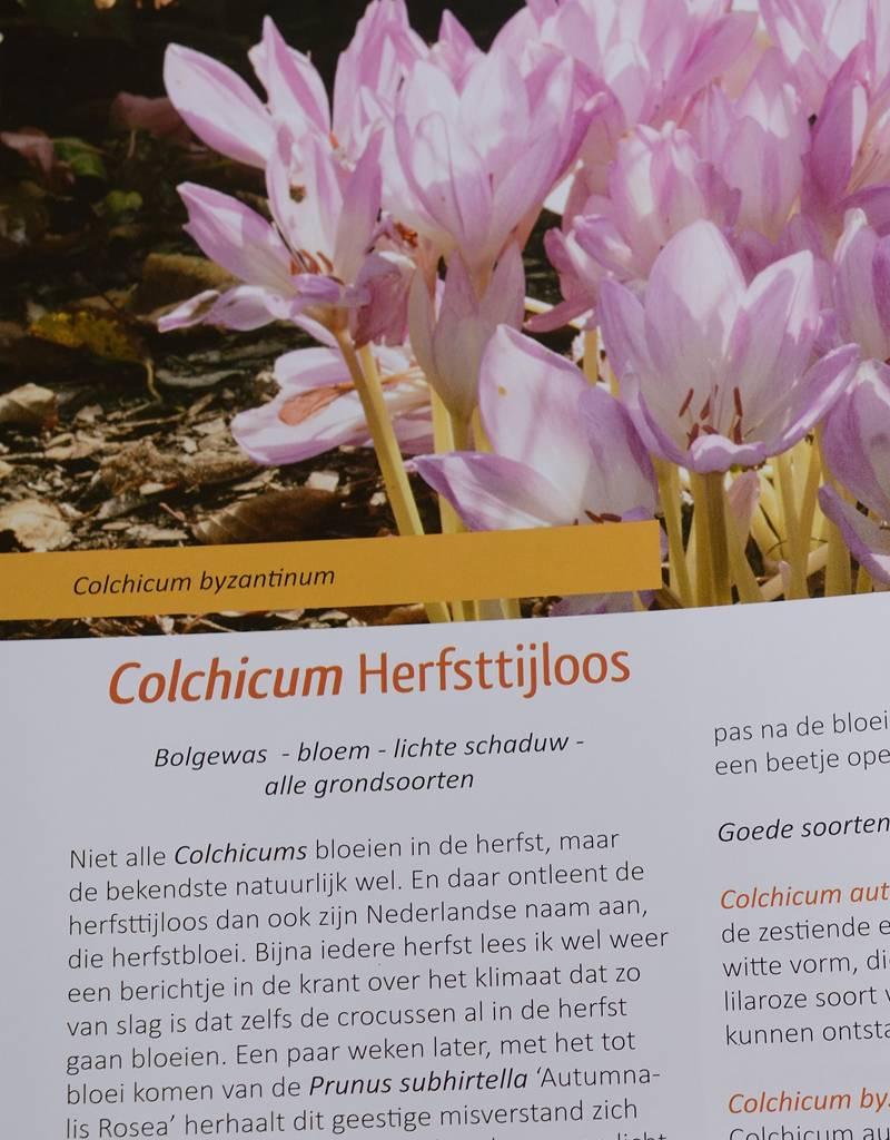 Boek  Leve de Herfsttuin - Cor van Gelderen