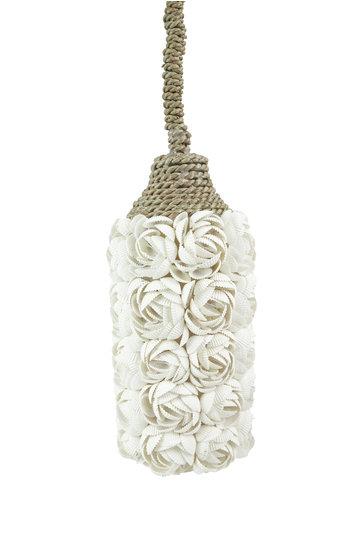 Lamp Shells Natural