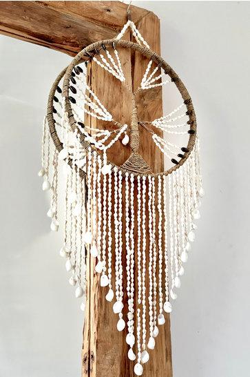 Dreamcatcher Muscheln Baum Natur