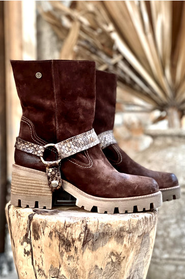 Ankle boots Ingrass Dublin Brown