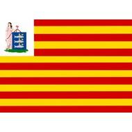 Vlag Enkhuizen Gemeentevlag