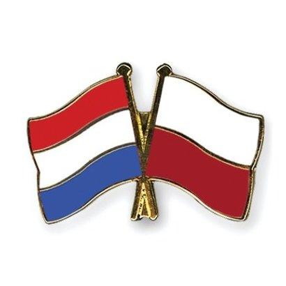 Speldje Nederland Polen vlag Vriendschapsspeldje