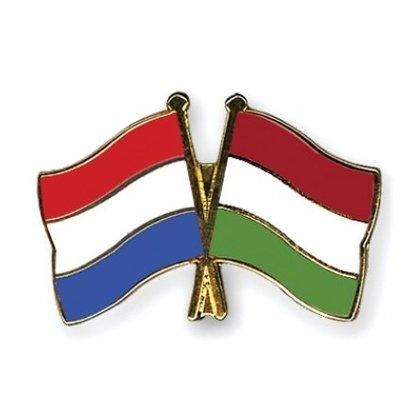 Speldje Nederland Hongarije vlag Vriendschapsspeldje