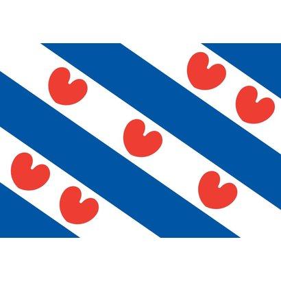 Bootvlag Provincie Friesland Boot vlag
