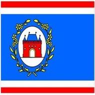 Bootvlag Elburg Borough Boat flag