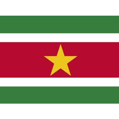 Vlag Suriname vlag 15 x 10m