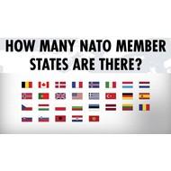 Vlag Set 28 NAVO partners vlaggen