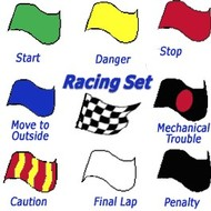 Vlag 11 F1 FIA Racing vlaggen Set
