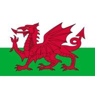 Vlag Wales flag