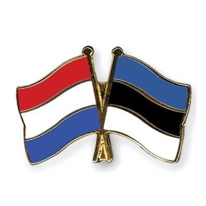 Speldje Netherlands Estonia flag Friendship lapel Pin