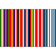 Vlag European Koolhaas flag