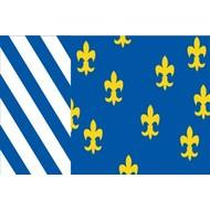 Vlag Bellingwedde Gemeente flag