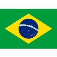 Vlag Brazil vlag Braziliaanse
