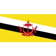 Vlag Brunei vlag