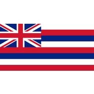 Vlag Hawaii flag