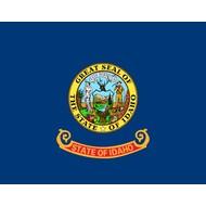 Vlag Idaho State flag