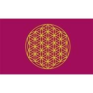 Vlag Bloem des levens vlag