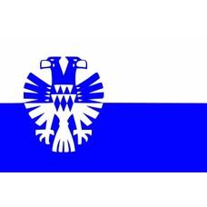 Vlag Arnhem Gemeentevlag